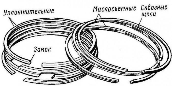 Кольцо поршневое маслосъемное Д50.04.007 - №1